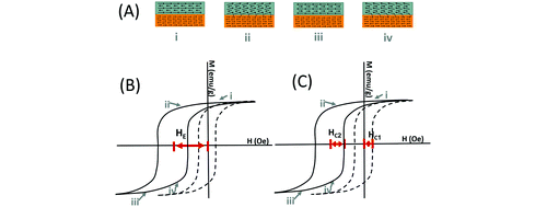 Exchange Bias in Bismuth Ferrite/Cobalt Ferrite Nanowires